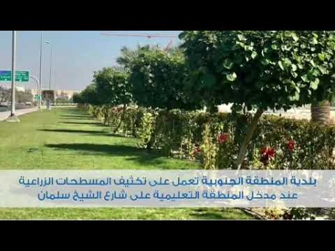 شاهد مدخل المنطقة التعليمية في مدينة عيسى  أخضر