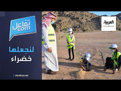 لنجعلها خضراء  حملة سعودية لزراعة ١٠ ملايين شجرة