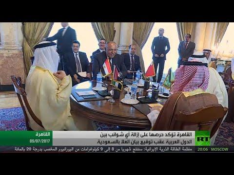شاهد شكري يؤكّد أن القاهرة تقدر كل جهد بذل من أجل تحقيق المصالحة
